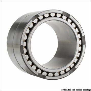320 mm x 440 mm x 118 mm  NBS SL024964 cylindrical roller bearings