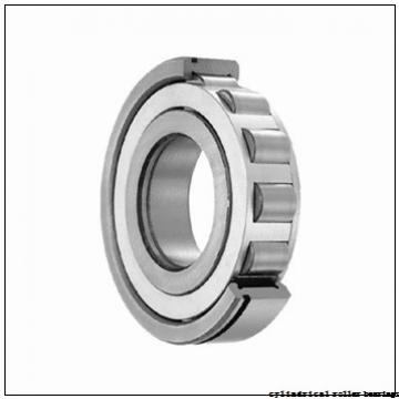 45 mm x 75 mm x 40 mm  IKO NAS 5009UUNR cylindrical roller bearings
