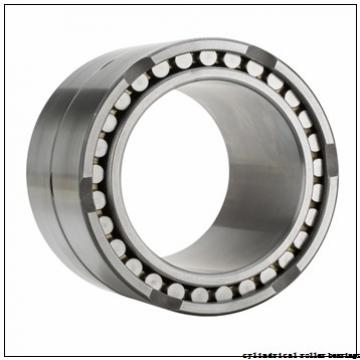95 mm x 170 mm x 43 mm  NKE NUP2219-E-M6 cylindrical roller bearings