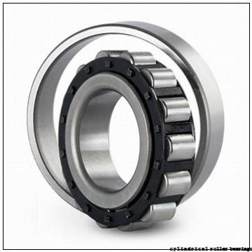 95 mm x 145 mm x 67 mm  IKO NAS 5019UUNR cylindrical roller bearings