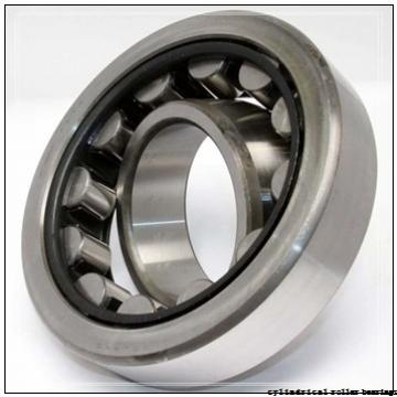 75 mm x 160 mm x 55 mm  FBJ NUP2315 cylindrical roller bearings