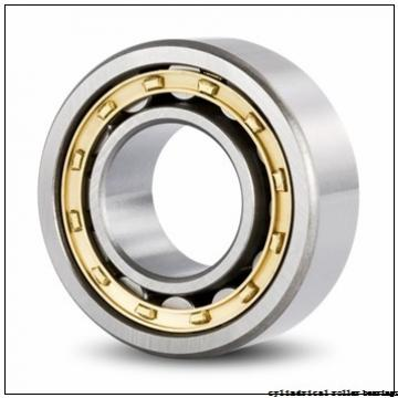 25 mm x 80 mm x 21 mm  NACHI NUP 405 cylindrical roller bearings