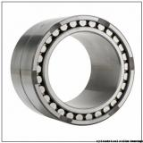 45 mm x 95 mm x 32 mm  Fersa F19015 cylindrical roller bearings