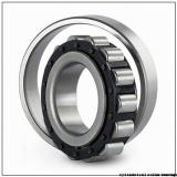 95,25 mm x 133,35 mm x 19,05 mm  SIGMA RXLS 3.3/4 cylindrical roller bearings