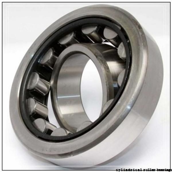 60 mm x 130 mm x 31 mm  SIGMA NJ 312 cylindrical roller bearings #2 image