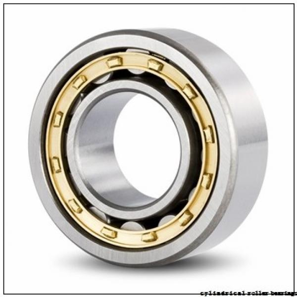 30 mm x 72 mm x 27 mm  SIGMA NJG 2306 VH cylindrical roller bearings #1 image